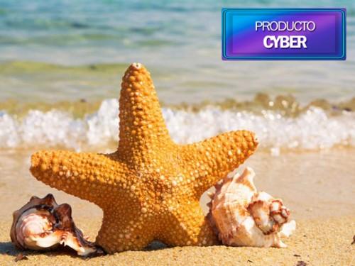 Paquete a Punta Cana en oferta - Open Voucher 2021