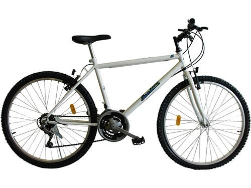 Bicicleta Mountain Bike Rodado 26 SIAMBRETTA