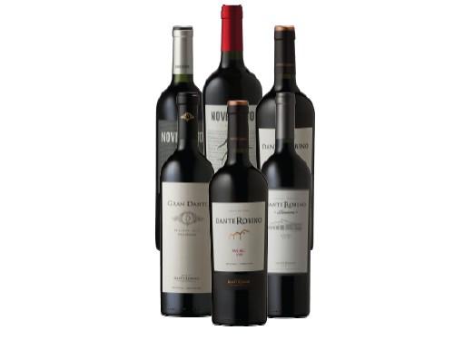 Pack de Vinos Malbec