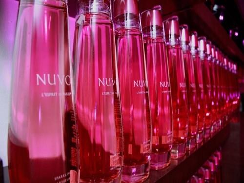 Vodka Nuvo Espiritu De Paris Champagne C/vodka