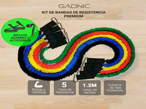 Kit de Bandas de Resistencia Premium GADNIC