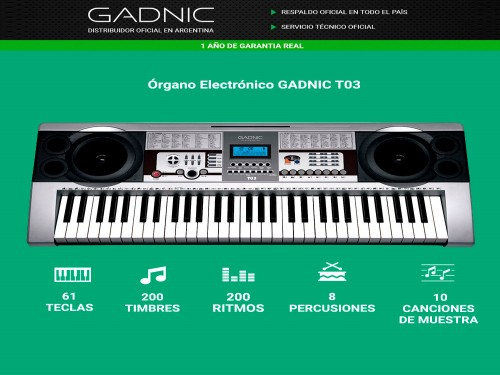 Organo Teclado Gadnic T03 61 Teclas + Cargador Homologado