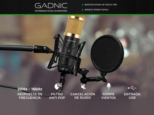 Micrófono Condenser Gadnic GM-800 USB Con Brazo Articulado USB