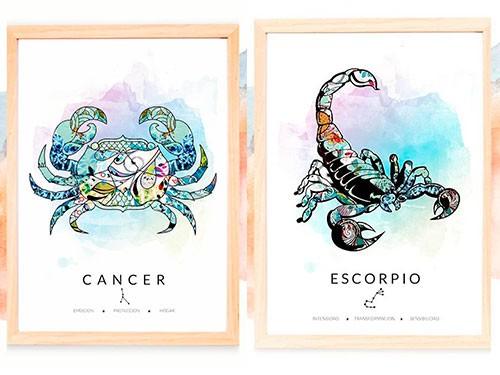 CUADRO DECORATIVO 12 SIGNOS Zodiaco. Marco + vidrio 25x35cm