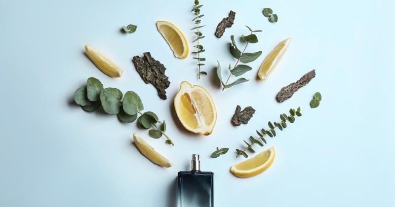 Tips para elegir tu perfume ideal según su esencia